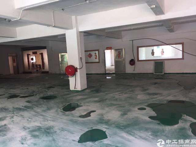 茶山镇独门独院厂房分租二楼