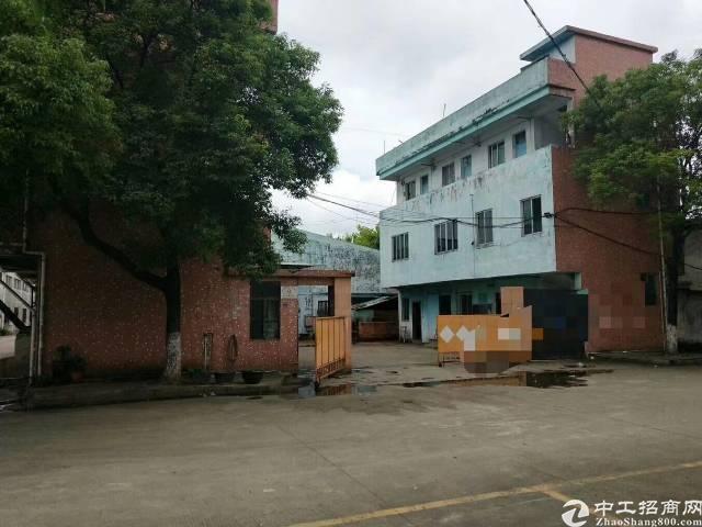 万江经典小独院厂房出租2180平方单一层-图5