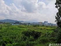 广东省茂名市100亩优质国有指标用地出售