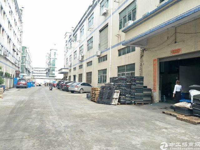 沙井  丽晶酒店旁一楼厂房600平米出租