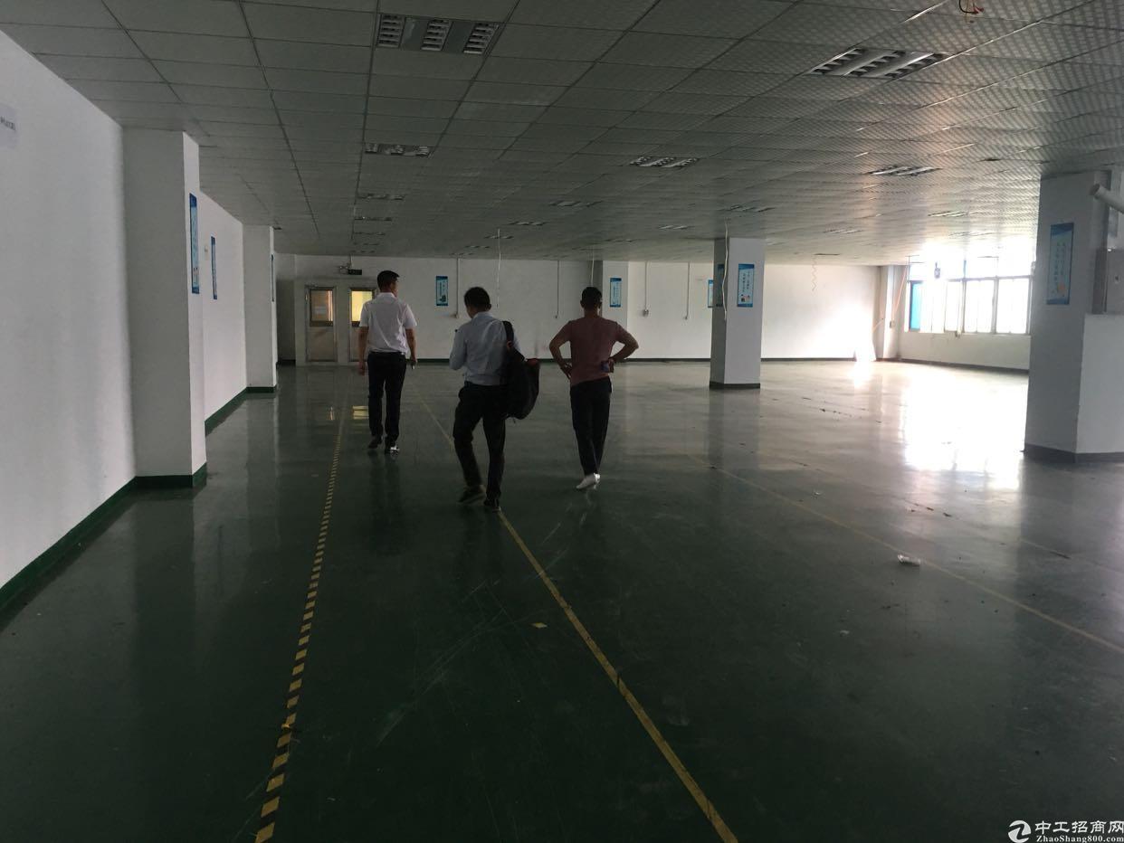 西乡鹤洲恒丰工业城旁3楼1300平米出租,租金32元月