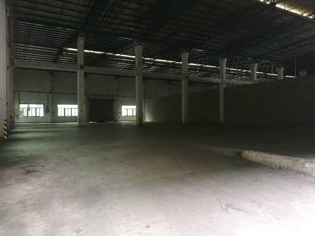西乡九围新村钢钩厂房10000平米大小可分租-图2