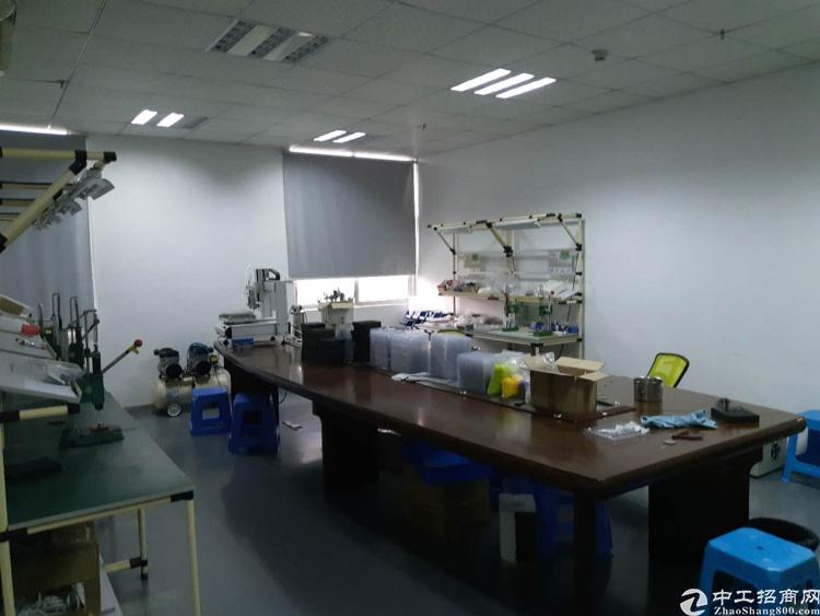 沙井107旁边新出厂房1280平豪华专注适合各种行业