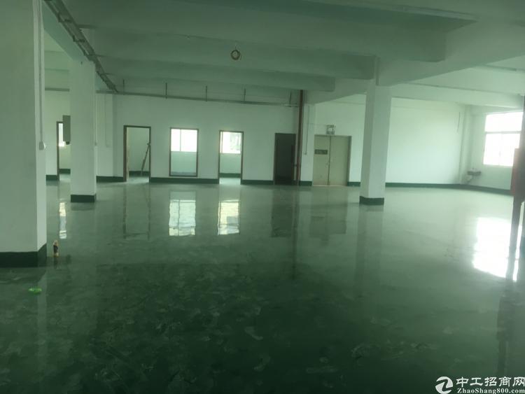 福永和平新出楼上1500平方厂房出租-图4