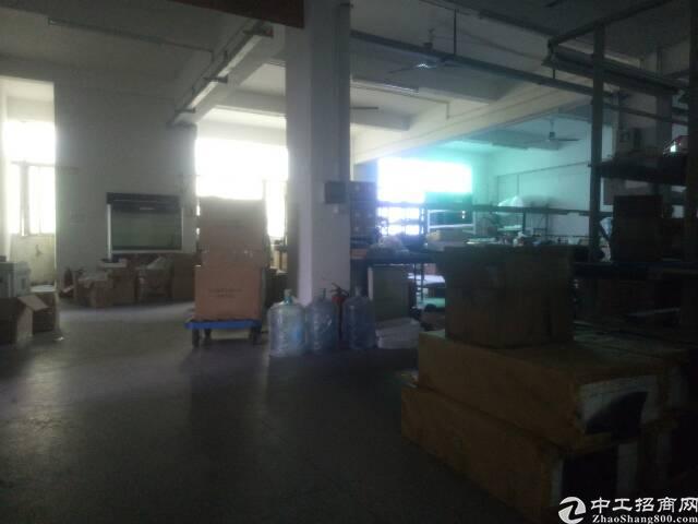 平湖华南城附近450平标准厂房带豪华办公室招租