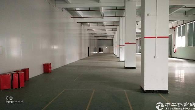 厦岗 高大上厂房实际面积23022平出租-图2
