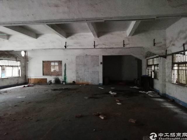凤岗镇竹塘村新出一楼260平米标准厂房适合五金注塑重工行业