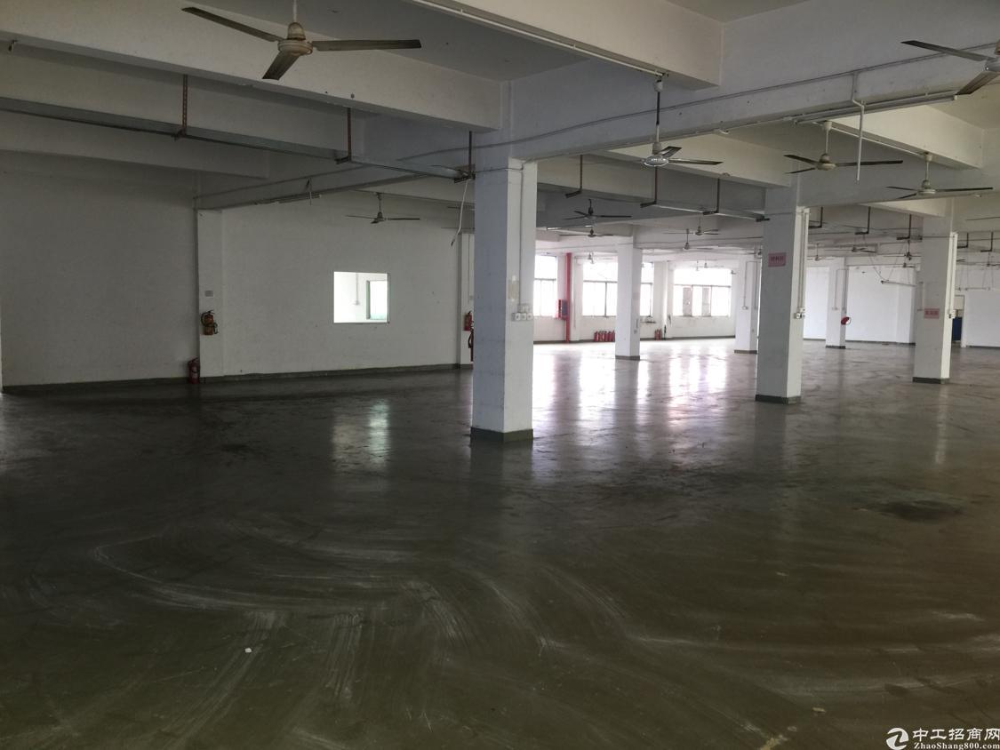 平湖独院厂房14000平米出租