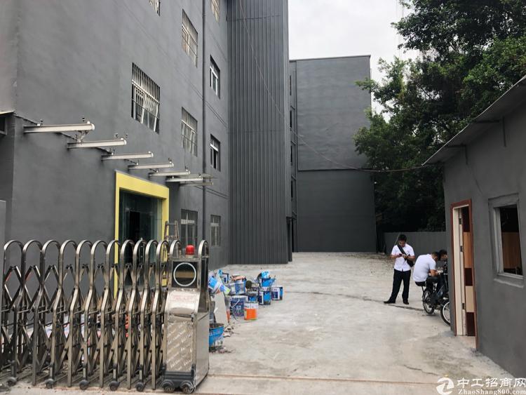 横岗安良沙荷路边独门独院全新改造厂房仓库出租
