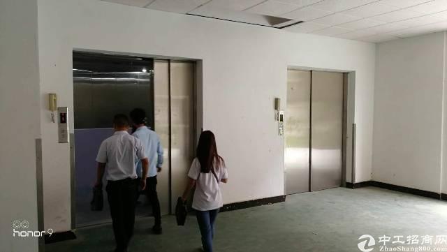 厦岗 高大上厂房实际面积23022平出租-图8