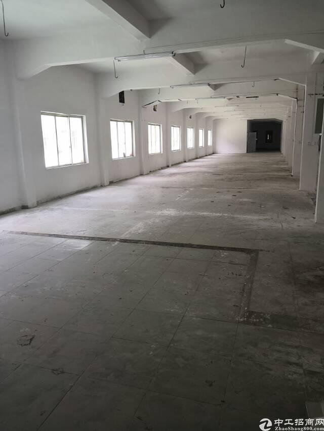 全新三层标准厂房出租