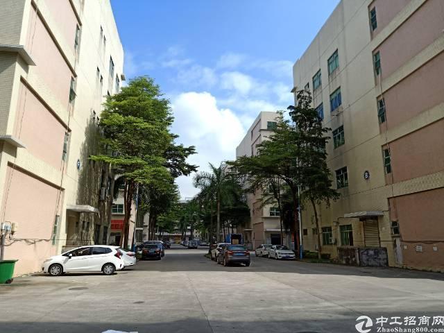 公明李松朗南光高速出口新出一楼厂房6米高厂房1880平方整层