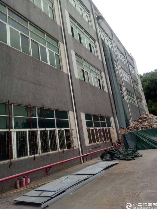 深圳平湖辅城坳新出独院厂房14000㎡出租