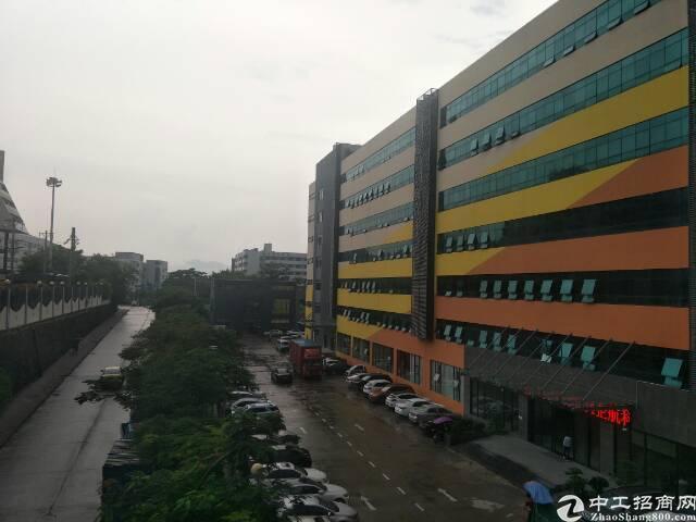 西丽阳光7400平超靓研发厂房出租