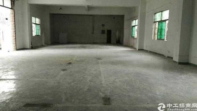 坪地原房东标准一楼300平米招租