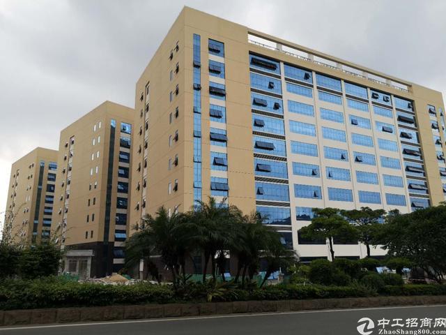 凤岗原房东100000平米全新高新园1000平米起租