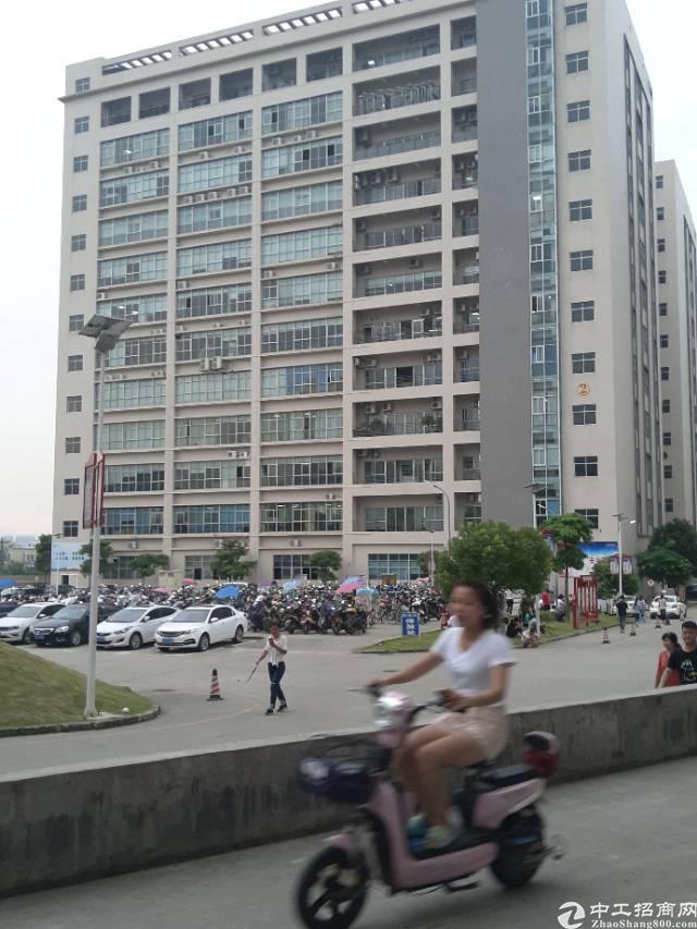 沙井高速路口附近芙蓉工业区厂房招租,花园式厂房,前台豪华装修