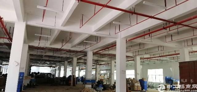 仲恺高大尚工业园区新空出1.2.3楼厂房招租