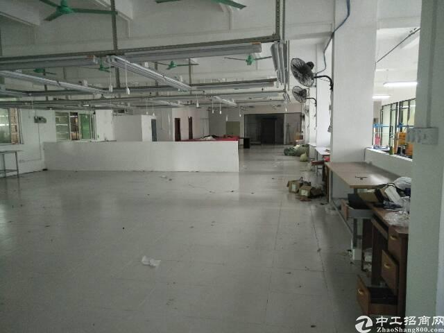 横岗四联88工业区二楼精装修厂房1280平,无转让费-图5