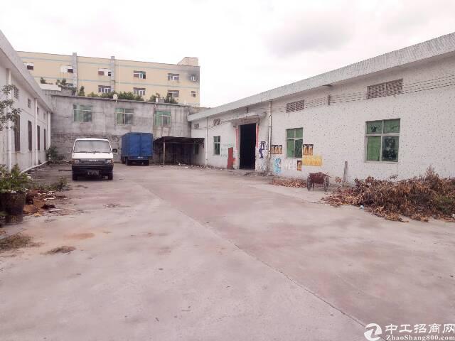 龙东村委厂房钢构700出租