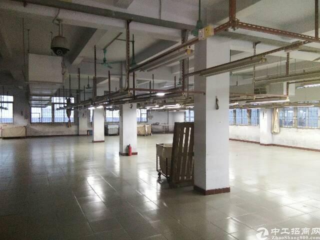 新出原房东标准厂房900平方