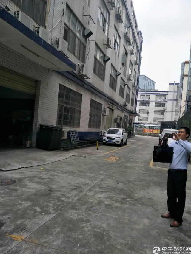坂田厂房,5000平方,一楼适合做汽车美容维修物流,证件齐全