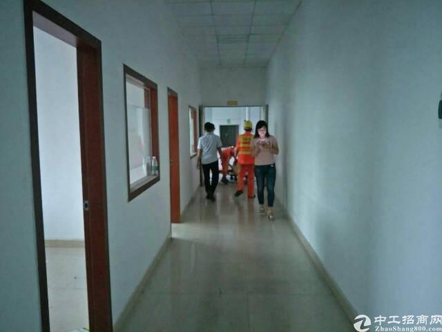 松岗红星2楼1300平带办公室装修