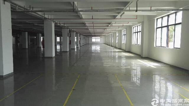 石岩汽车站附近5000平米厂房出租
