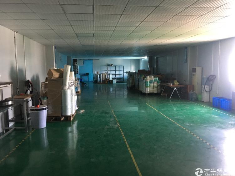 松岗广田路边新出楼上600平方厂房
