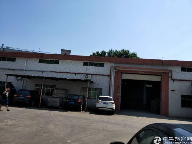 企石镇原房东单一层厂房1500平方滴水7米