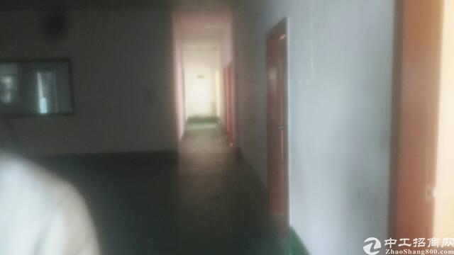 松岗沙浦有一楼小面积550平厂房出租