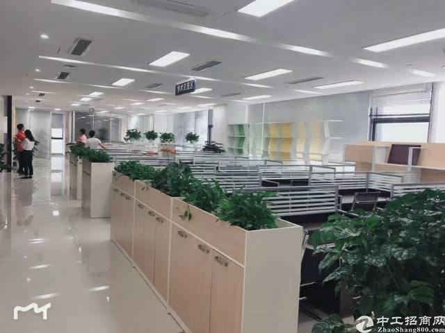 坪山大工业区现成办公楼950平米招租配全新家具