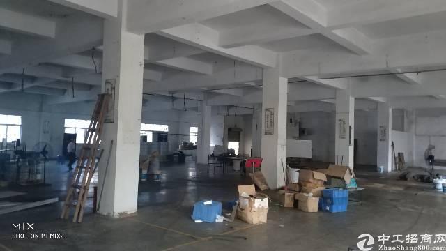 龙岗五联标准厂房一楼680平出租-图2