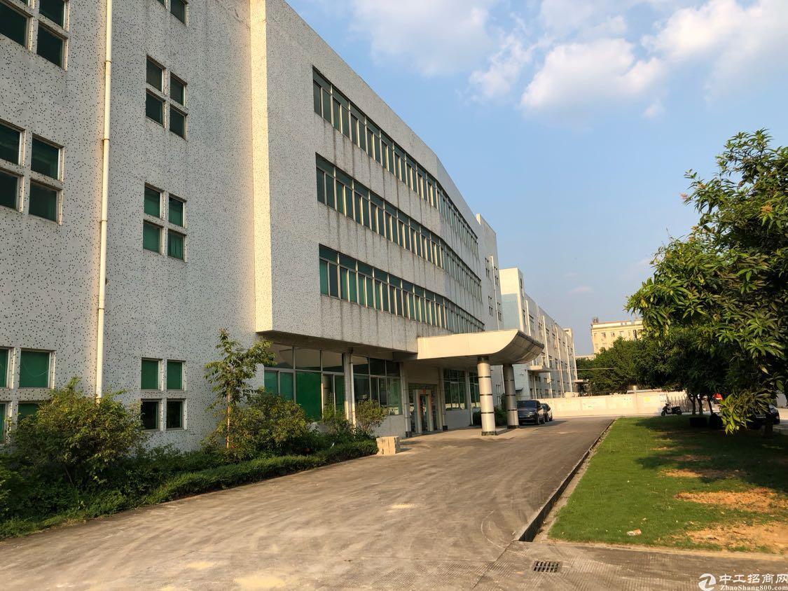 福永新和新出一楼1500平方层高7米厂房出租