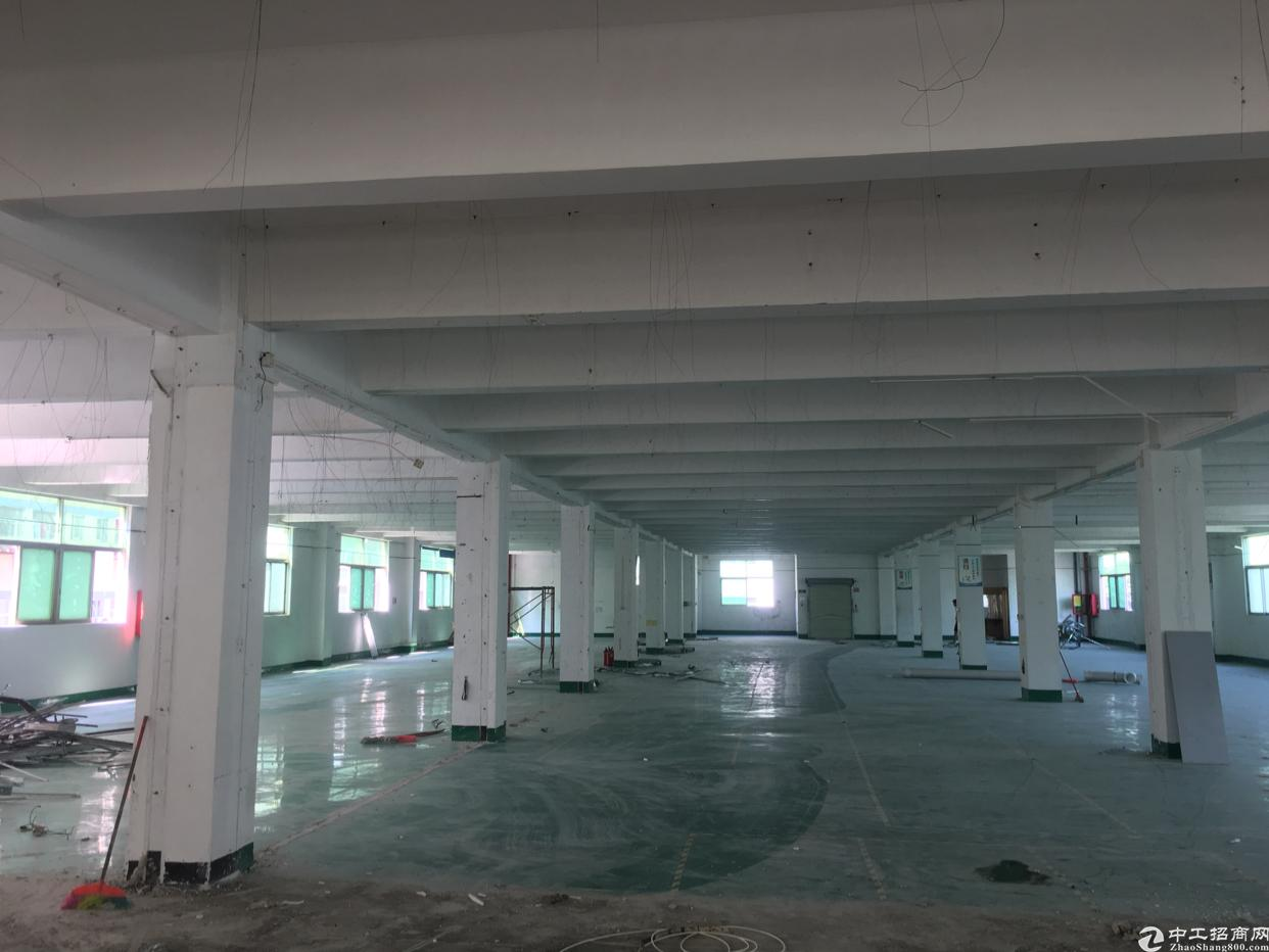 福永塘尾新出厂房900平方