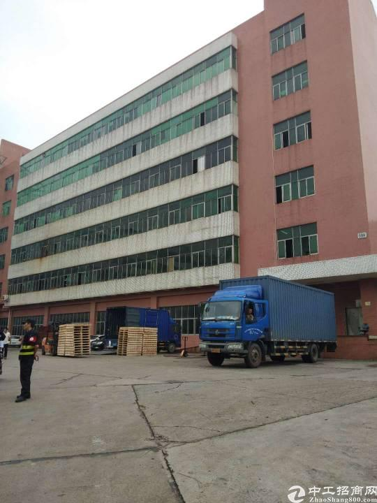 西乡鹤洲107国道边上新出厂房2500平米整层出租