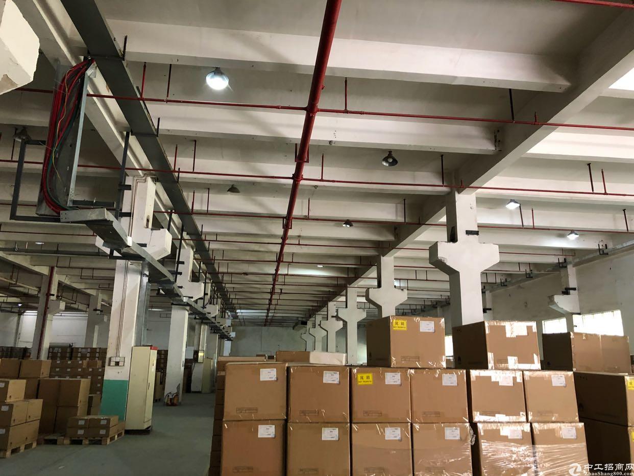 坪山坑梓莹展工业园新出一楼2250平米 带牛角