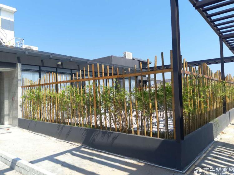 沙井西环路旁边新出高端1200平场地适合各种商业