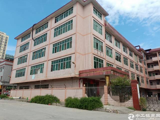茶山镇14000平米标准独院厂房出租