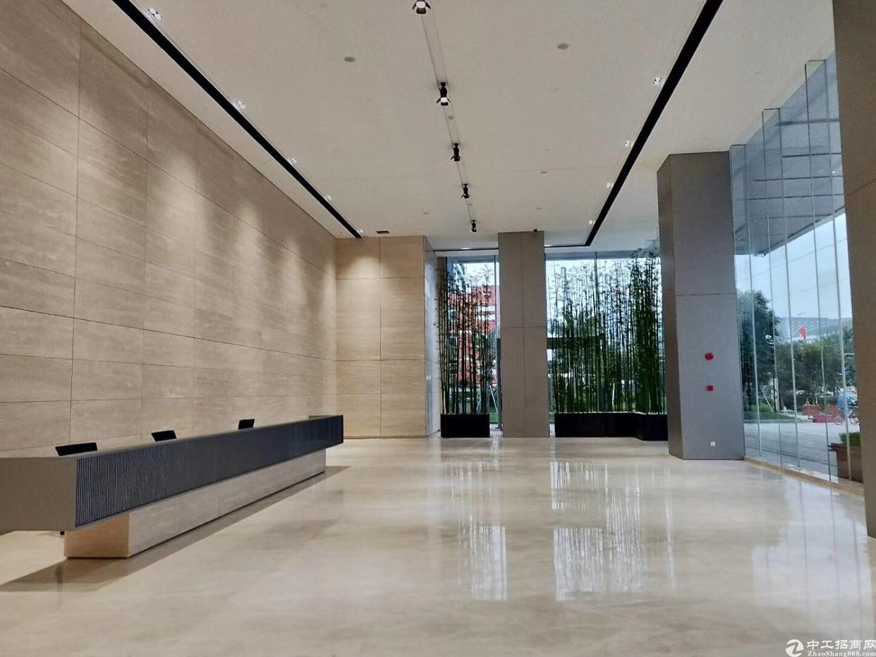 坪山中心区高新写字楼2300平米52元出租