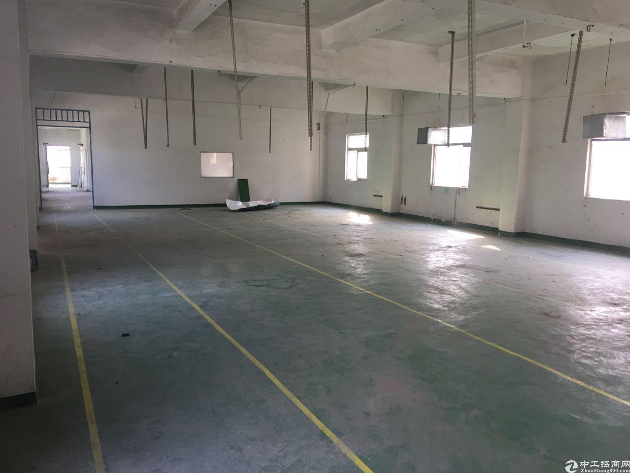 龙岗五联新出一楼450平带简单装修标准厂房