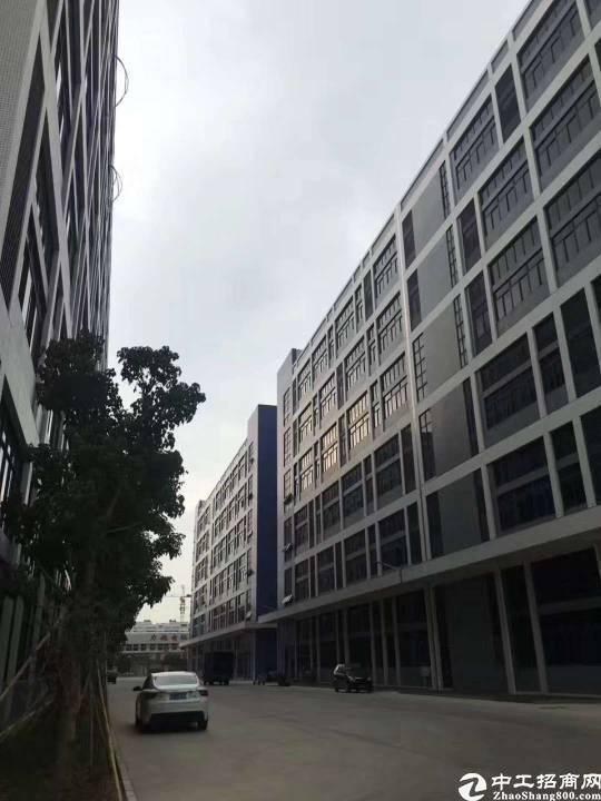 长安镇精装修厂房出租15元4000,宿舍1000水电齐全原房