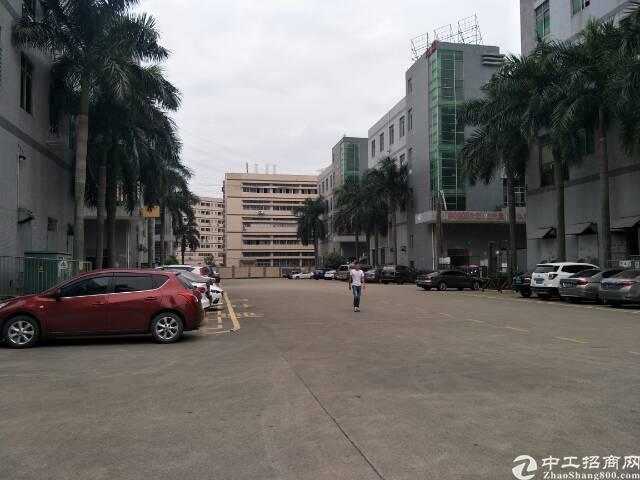 沙三大型村委工业园区独栋厂房出租二楼整层1960平带装修