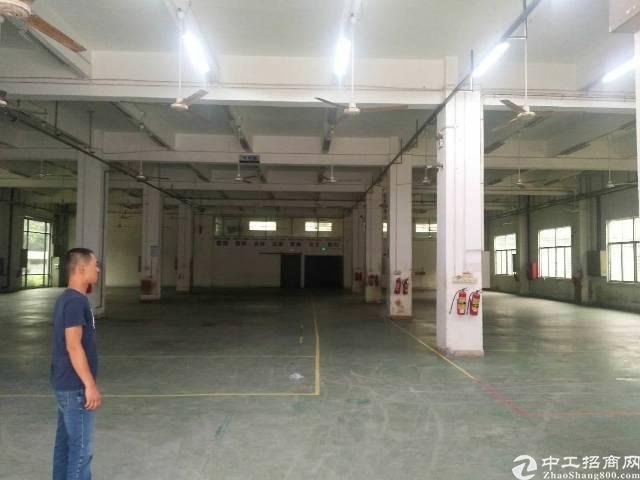 松岗主干道边上新出一楼高度6米高1650平米厂房