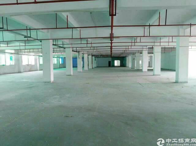 坪地中心村高新科技园整栋32000平米全新红本喷淋厂房可分租