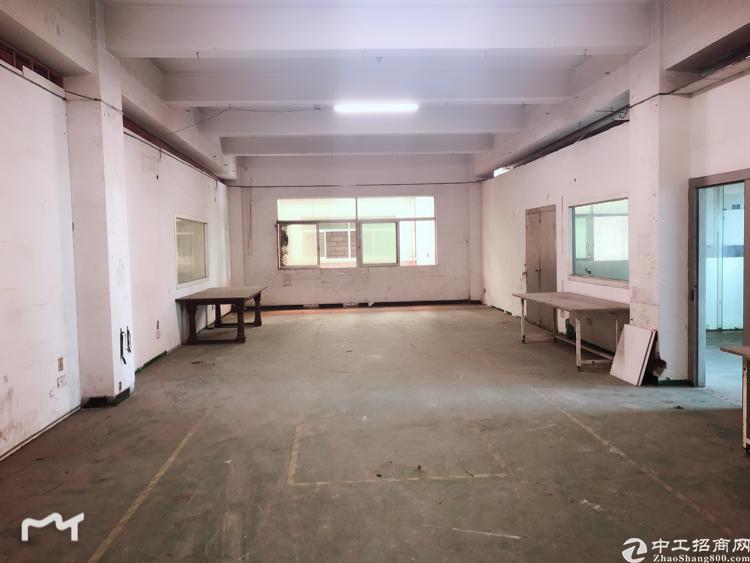 寮步标准厂房3下招租