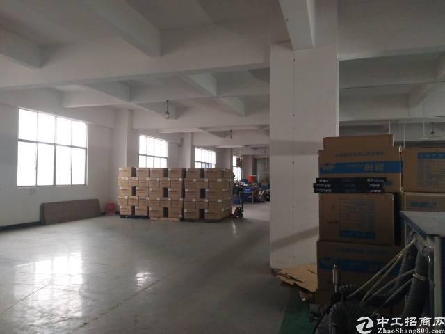 松岗主干道边上新出楼上精装修厂房1100平米