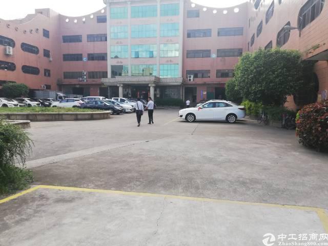 凤岗新出办公大厅428平米精装办公楼