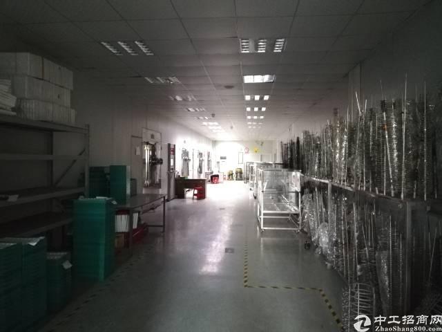 沙井民主西部新出楼上厂房800平,带装修办公室,吊顶地坪漆