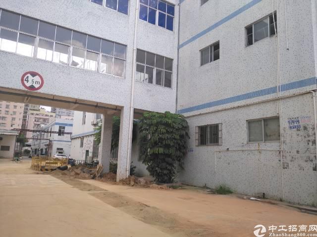 福永桥头工业区一楼整层3900平米厂房招租